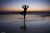 woman_practices_yoga_on_the_beach_at_sunset-other